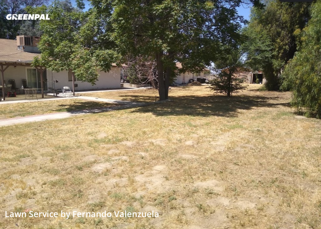 Lawn Carein Moreno Valley,92555,Lawn Maintenance by Cold Springs Lawn Care, work completed in Jul , 2020