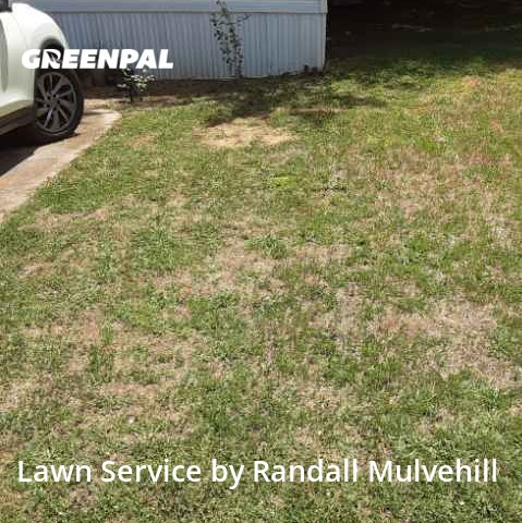 Lawn Servicein Gardendale,35071,Yard Mowing by Mulvehill Landscaping, work completed in Jul , 2020