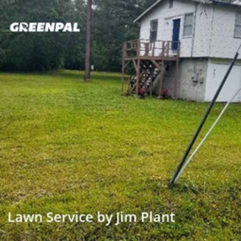 Lawn Mowingin Jacksonville,32218,Lawn Care by Jim Plant Landscapin, work completed in May , 2020