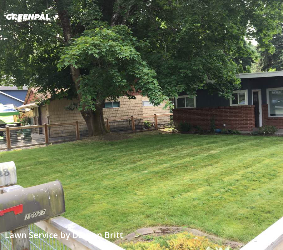 Grass Cutin Renton,98058,Lawn Maintenance by A Kut Above , work completed in Sep , 2020