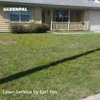 Lawn Mowin Savannah,31406,Grass Cutting by Fox Services , work completed in May , 2020