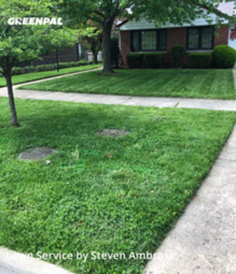 Grass Cutin Des Plaines,60016,Yard Cutting by 4brothers, work completed in Sep , 2020