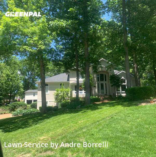 Lawn Cuttingin Manchester,63011,Lawn Mowing Service by Juniors Lawn Care, work completed in Aug , 2020