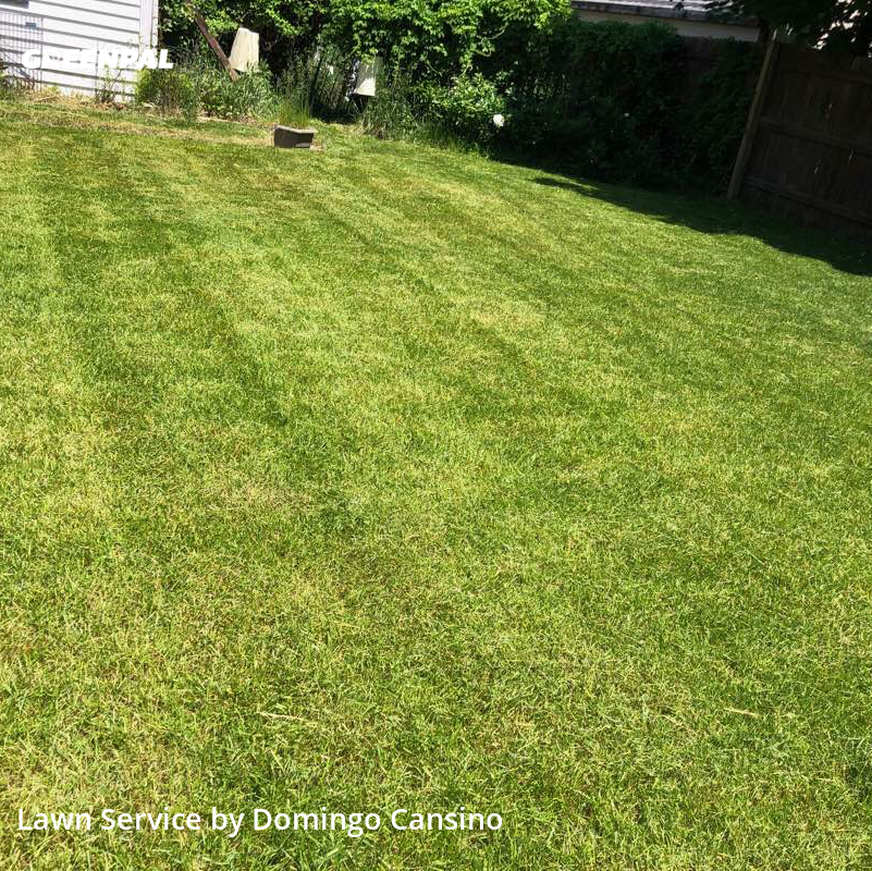 Lawn Mowingin Waukesha,53186,Yard Cutting by Tri Stars Landscapin, work completed in Jul , 2020
