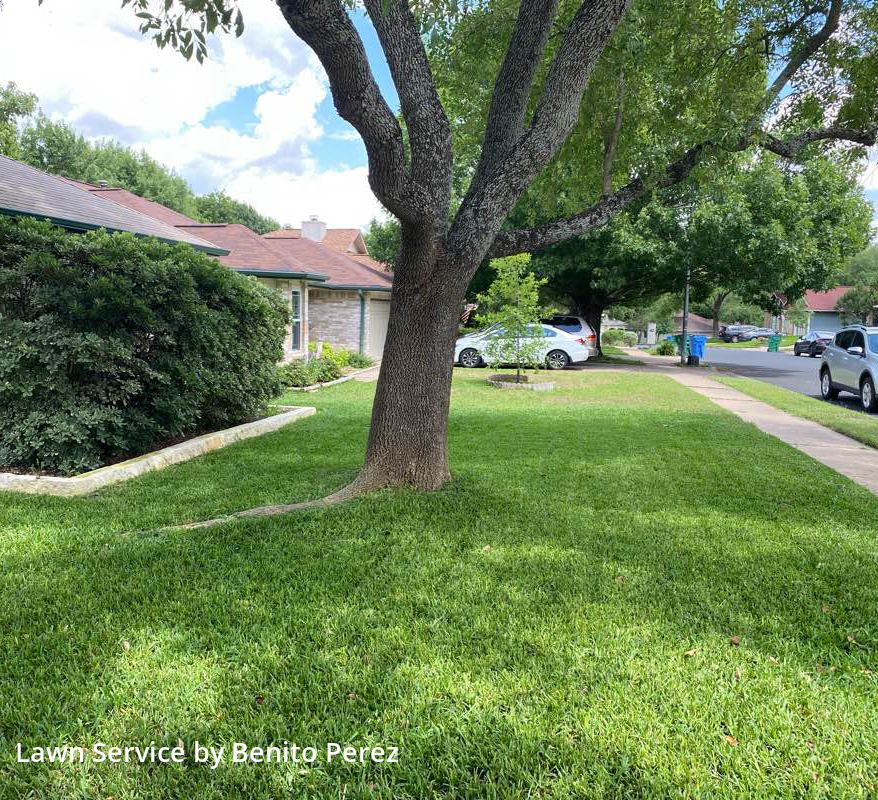 Lawn Care Servicein Wells Branch,78728,Yard Mowing by Benzki Lawn Care, work completed in Jul , 2020