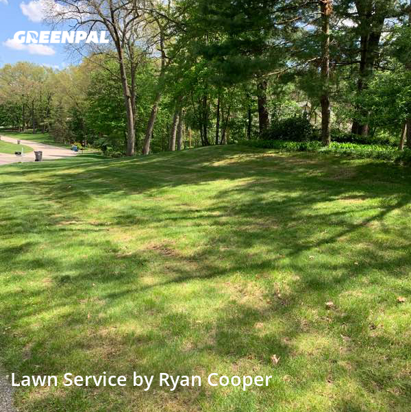Lawn Mowing Servicein Grand Rapids,49546,Lawn Mowing by Text 2 Cut Lawn Care, work completed in Jul , 2020