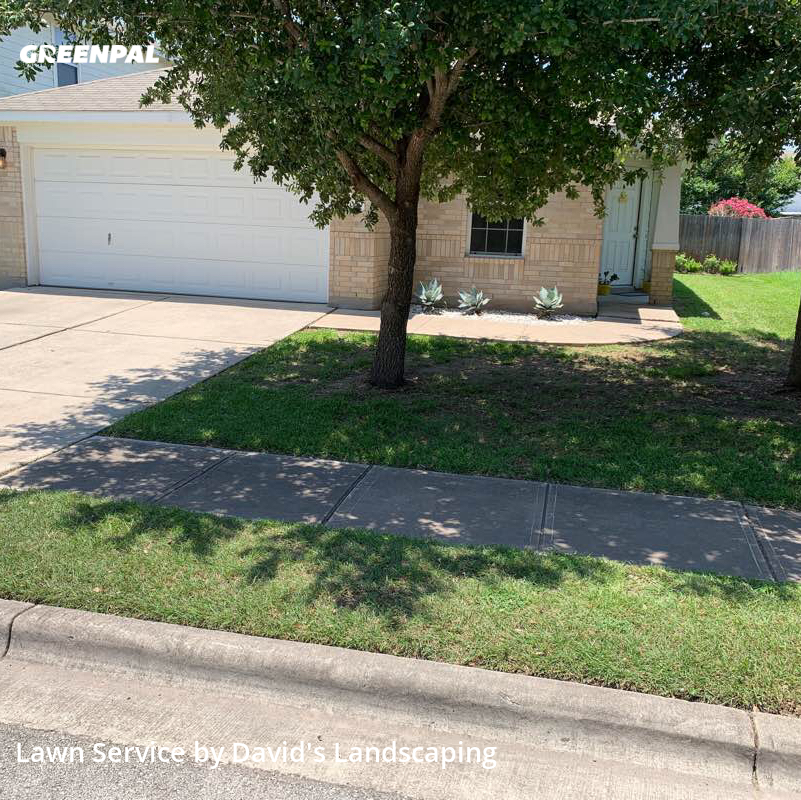 Lawn Carein Buda,78610,Grass Cut by David's Landscaping, work completed in Jul , 2020