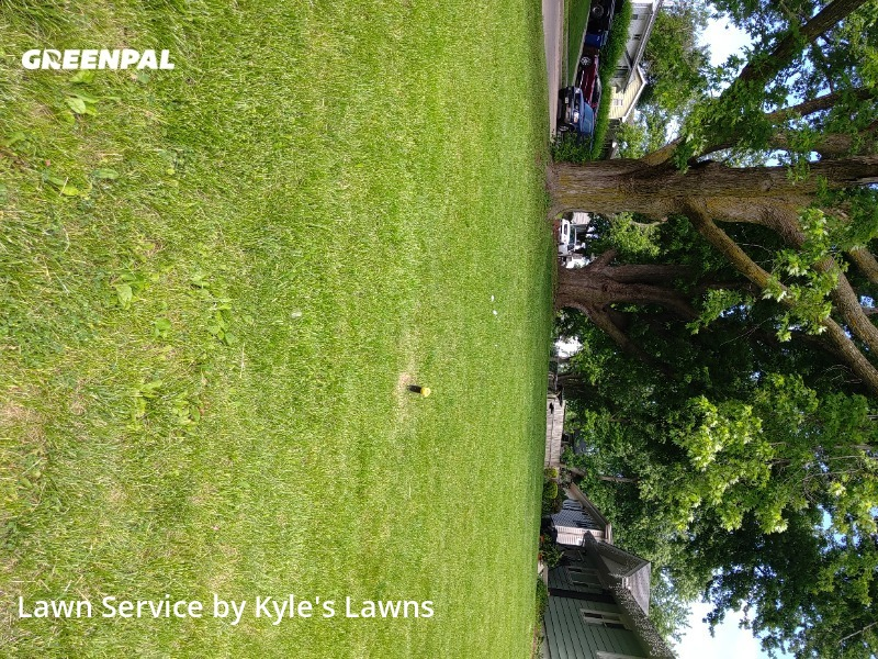 Grass Cutin Bellevue,68005,Lawn Mowing by Kyle's Lawns, work completed in Jul , 2020
