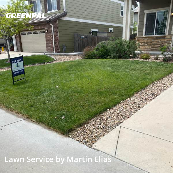 Lawn Servicein Thornton,80602,Yard Mowing by Elias Landscape , work completed in Jul , 2020
