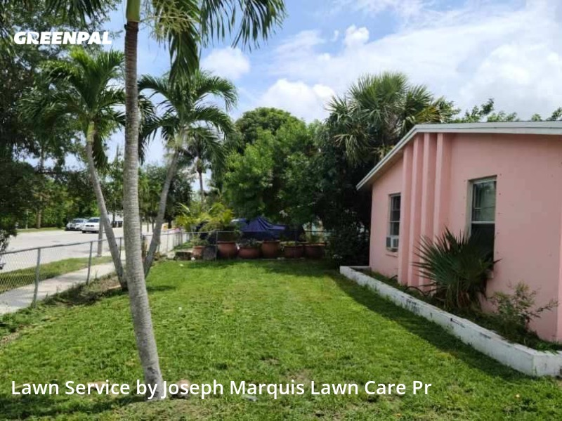 Grass Cuttingin West Palm Beach,33405,Grass Cut by Marquis Lawn Care Pr, work completed in Jul , 2020