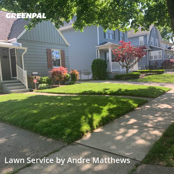Lawn Cutin Royal Oak,48067,Lawn Maintenance by Afaroe Lawncare, work completed in Jul , 2020