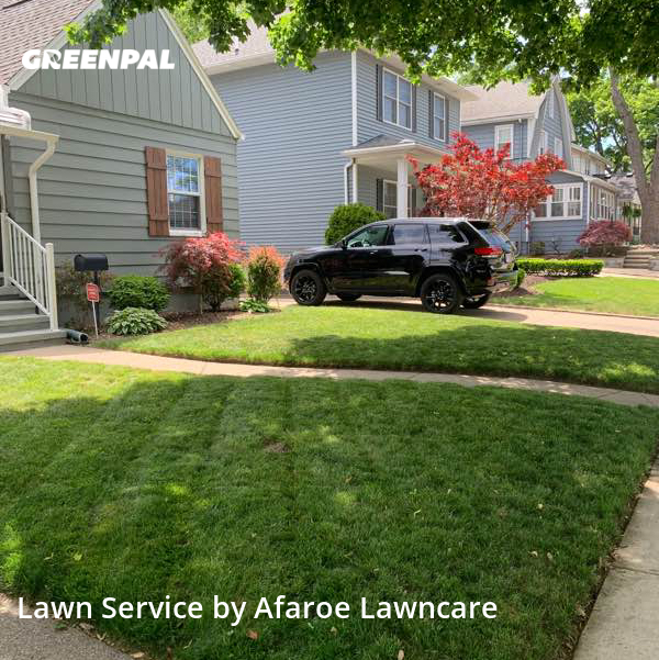 Lawn Maintenancein Royal Oak,48067,Lawn Care by Afaroe Lawncare, work completed in Jul , 2020