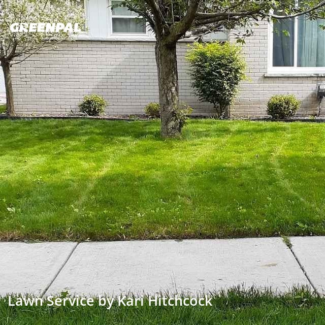 Yard Mowingin Livonia,48150,Lawn Mowing Service by M & J Lawn Maintenan, work completed in Jul , 2020
