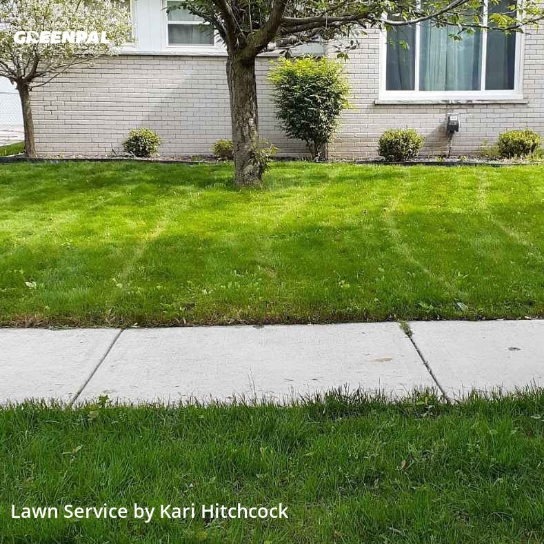 Grass Cuttingin Livonia,48150,Yard Cutting by M & J Lawn Maintenan, work completed in Jul , 2020