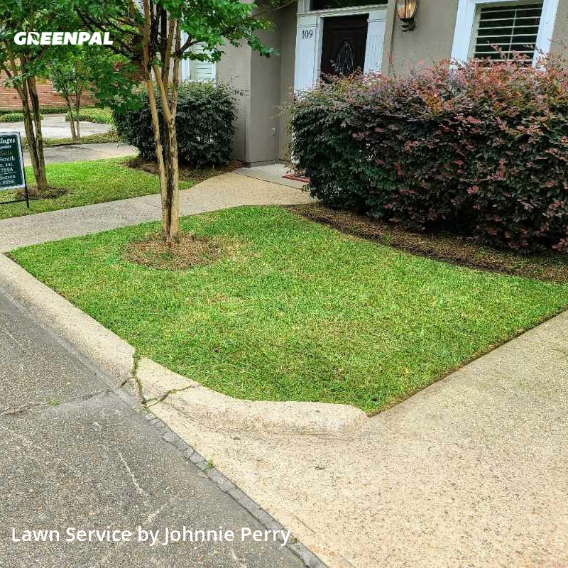 Lawn Maintenancein Ridgeland,39211,Lawn Mow by Perry & Perry Svcs. , work completed in Aug , 2020