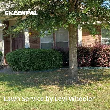 Lawn Cutin Forney,75126,Lawn Mowing by L&M Landscaping, work completed in Jul , 2020