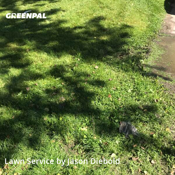 Yard Mowingin Leavenworth,66048,Grass Cutting by Odyssey Lawn Care, work completed in Jul , 2020