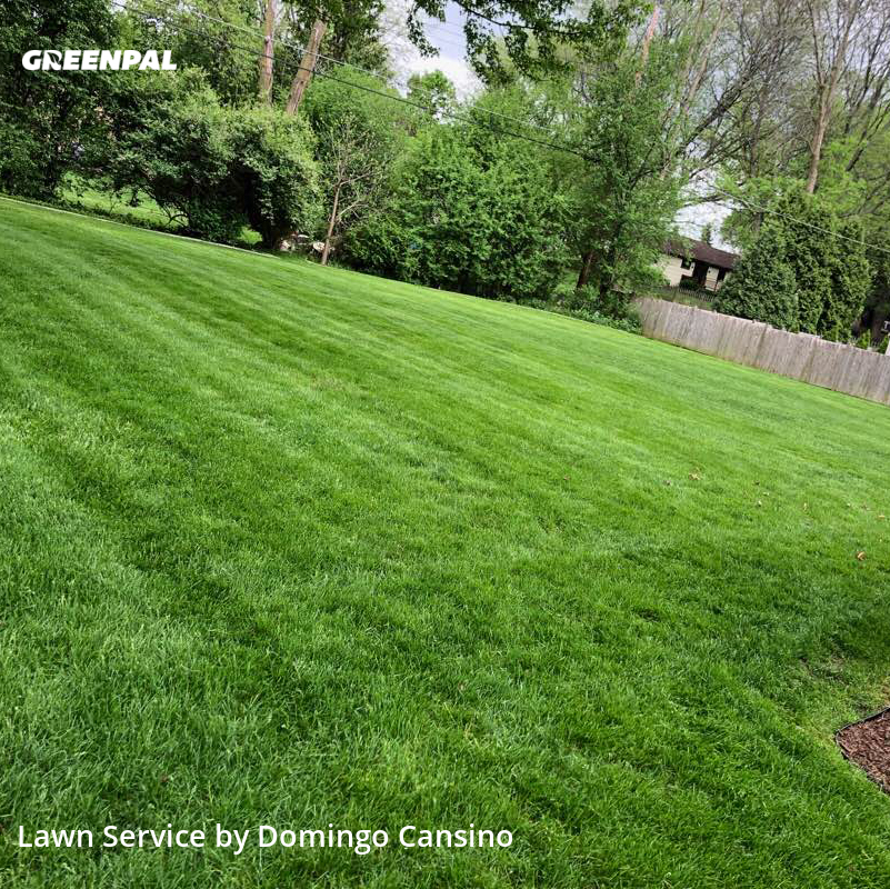 Lawn Maintenancein New Berlin,53151,Lawn Service by Tri Stars Landscaping, work completed in Aug , 2020
