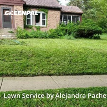 Lawn Carein Elgin,60120,Lawn Cutting by P&A Ps Services Corp, work completed in Jul , 2020