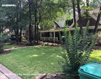 Grass Cutin The Woodlands,77381,Lawn Cutting by Hawthorne Lawn Care, work completed in Aug , 2020