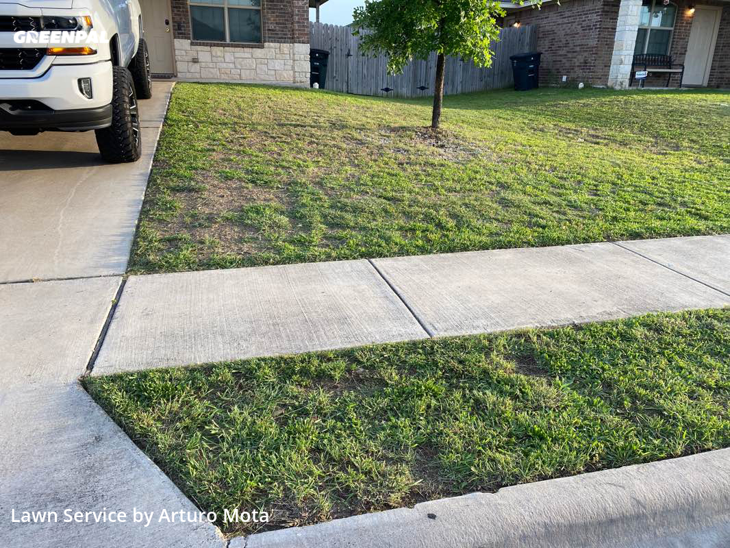 Yard Cuttingin Killeen,76549,Lawn Service by Cutting Edge Lawn Care, work completed in Sep , 2020