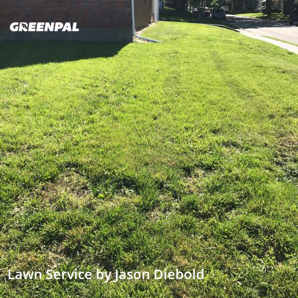 Lawn Cuttingin Leavenworth,66048,Yard Mowing by Odyssey Lawn Care, work completed in Jul , 2020