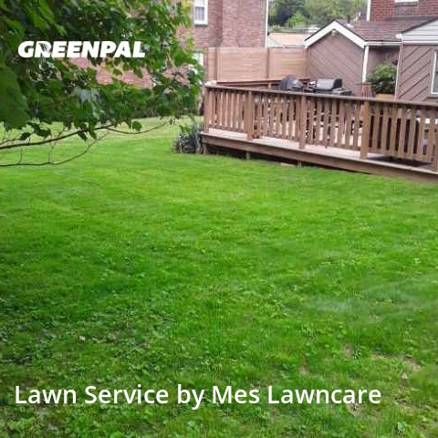 Lawn Servicein Bethel Park,15102,Lawn Cutting by Mes Lawncare, work completed in Aug , 2020