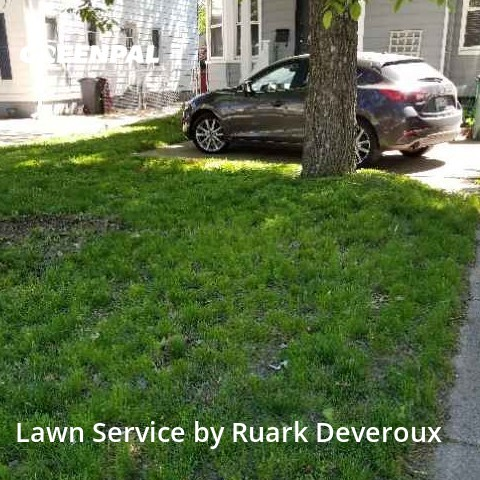 Lawn Mowin Royal Oak,48073,Yard Cutting by Veteran Lawn Care Usa, work completed in Sep , 2020