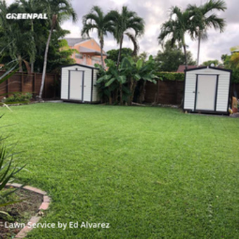 Lawn Service in Miami, 33155, Grass Cutting by Edilson Landscaping, work completed in 29 May, 2020