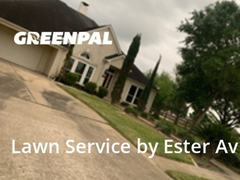 Lawn Maintenancein Cypress,77433,Yard Cutting by Valladares Landscap, work completed in Jul , 2020