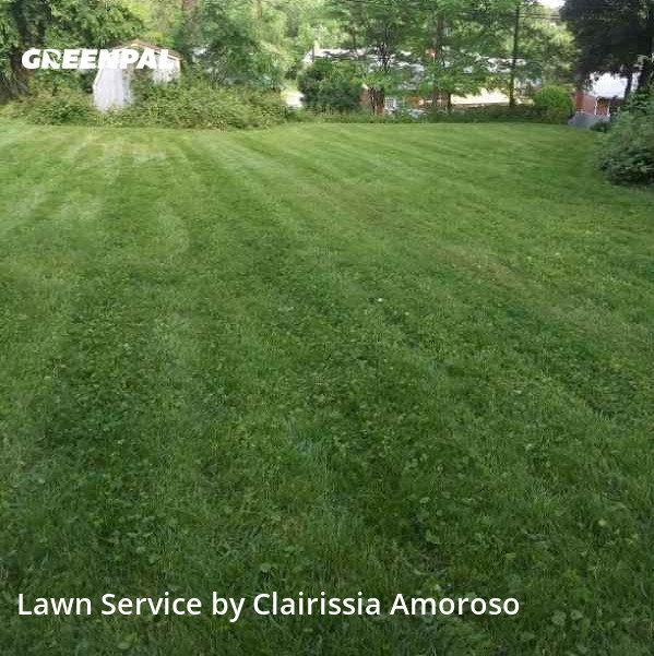 Lawn Mowingin Parkville,21234,Yard Cutting by Lawn Hope, work completed in Aug , 2020