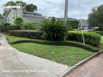 Lawn Mowingin Winter Park,32789,Lawn Mowing by Afa Landscaping Llc, work completed in Sep , 2020