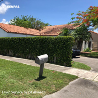 Grass Cuttingin Palmetto Bay,33157,Grass Cutting by Edilson Landscaping, work completed in Jul , 2020