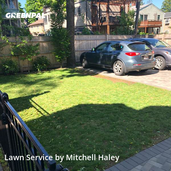 Yard Cuttingin Cambridge,2138,Lawn Care by Maverick Services Ll, work completed in Jul , 2020