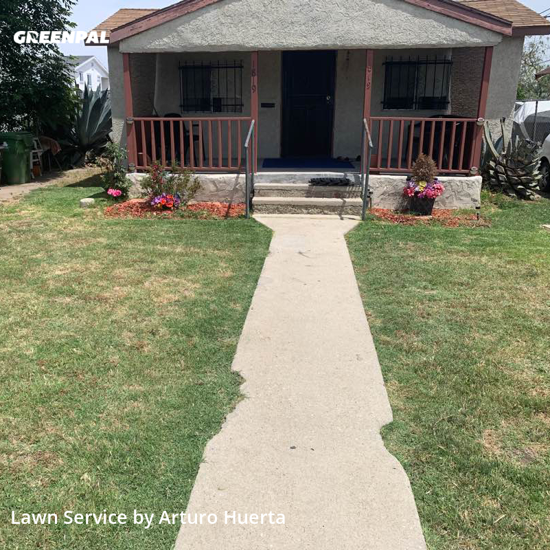 Lawn Maintenancein Los Angeles,90059,Grass Cut by Green Rabbit, work completed in Aug , 2020