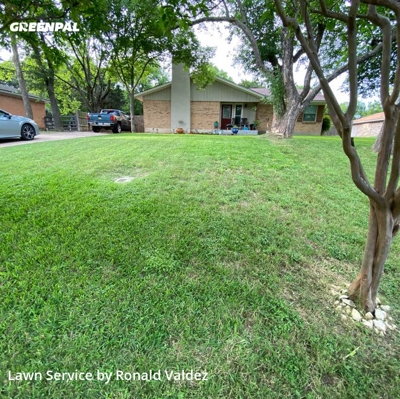 Lawn Cuttingin Duncanville,75116,Lawn Cutting by Valdez Lawn Care, work completed in Jul , 2020