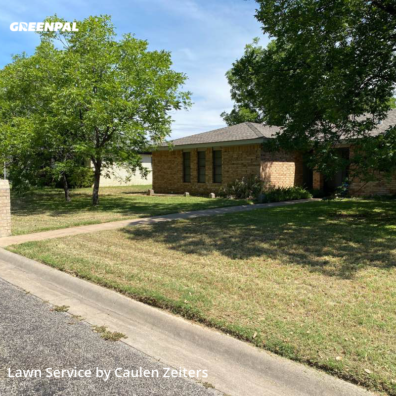 Lawn Cuttingin San Angelo,76904,Lawn Mowing by Cz Lawncare , work completed in Jul , 2020