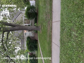 Lawn Cutin Elmhurst,60126,Lawn Cut by Roque Landscaping , work completed in Jul , 2020