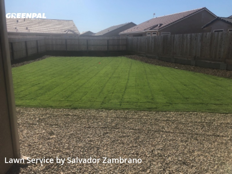 Lawn Mowingin Merced,95348,Lawn Cutting by Zambrano's Lawn Care, work completed in Aug , 2020