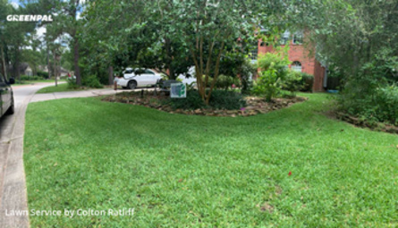 Lawn Cuttingin Spring,77382,Lawn Care by L7 Lawn Services, work completed in Jul , 2020