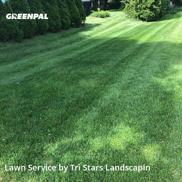 Lawn Mowingin Brookfield,53005,Yard Cutting by Tri Stars Landscaping, work completed in Aug , 2020