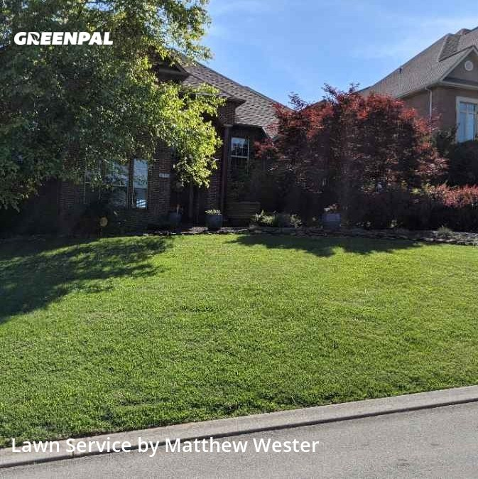 Grass Cutin Maryville,37803,Grass Cutting by Elementary Construct, work completed in Sep , 2020