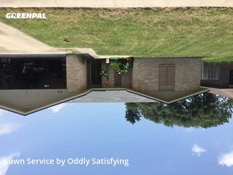 Lawn Mowing Servicein Corpus Christi,78418,Grass Cut by Oddly Satisfying , work completed in Jul , 2020