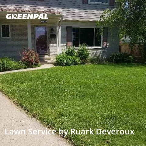Grass Cutin Warren,48093,Lawn Mow by Veteran Lawn Care Usa, work completed in Sep , 2020