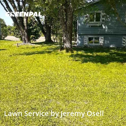 Grass Cuttingin Maple Grove,55311,Lawn Care Service by Osell Lawn Care, work completed in Aug , 2020