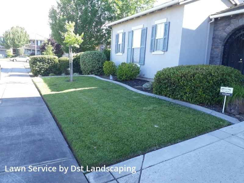 Lawn Care Servicein Rancho Cordova,95742,Lawn Service by Dst Landscaping, work completed in Jul , 2020