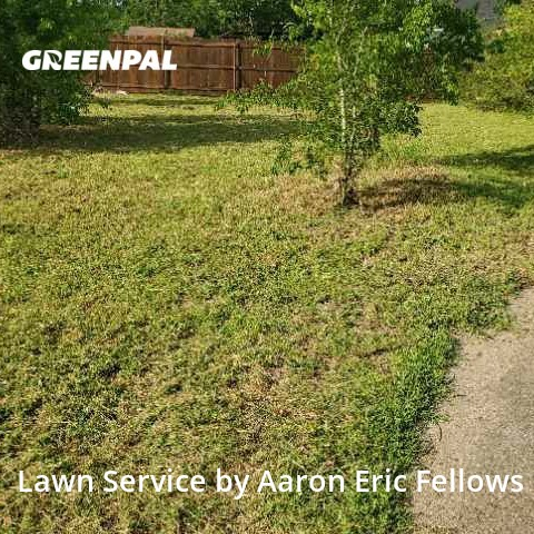 Lawn Cutin Bryan,77803,Lawn Cut by Aarons Landscaping , work completed in Jul , 2020