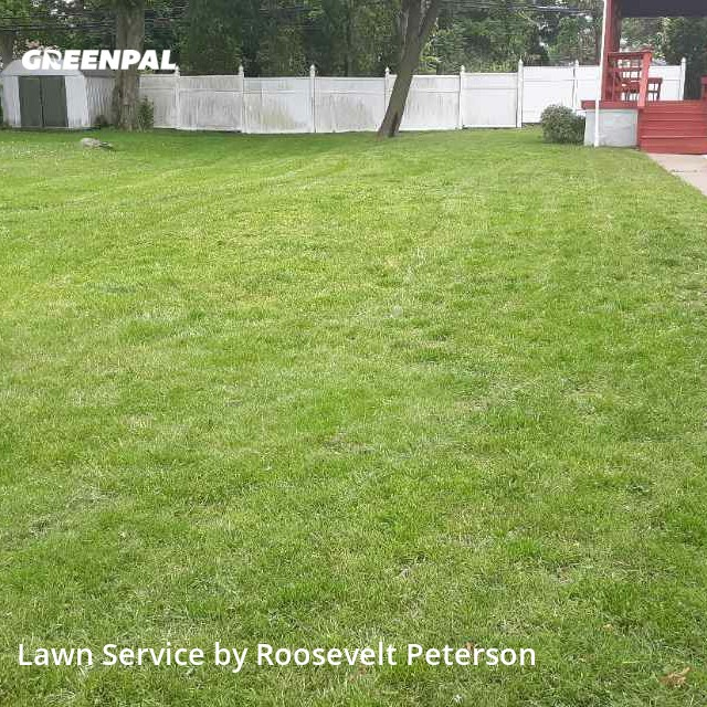 Lawn Maintenancein Willow Grove,19090,Grass Cutting by Sams Llc, work completed in Sep , 2020