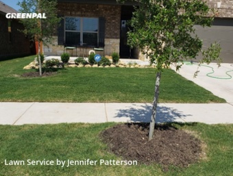 Yard Cuttingin Denton,76208,Lawn Mowing Service by Jenni's Green Team, work completed in Jul , 2020