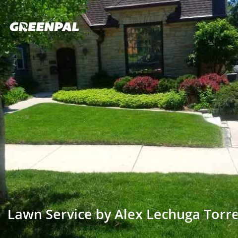 Lawn Mowin Wauwatosa,53226,Lawn Maintenance by Torres Lawn Care, work completed in Aug , 2020